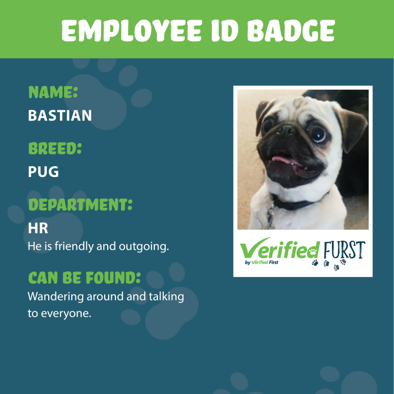 VerifiedFurst_Bastian-Pug