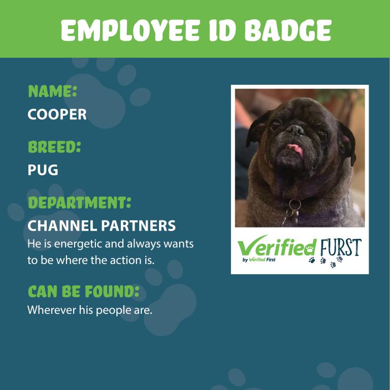 VerifiedFurst_Cooper-Pug