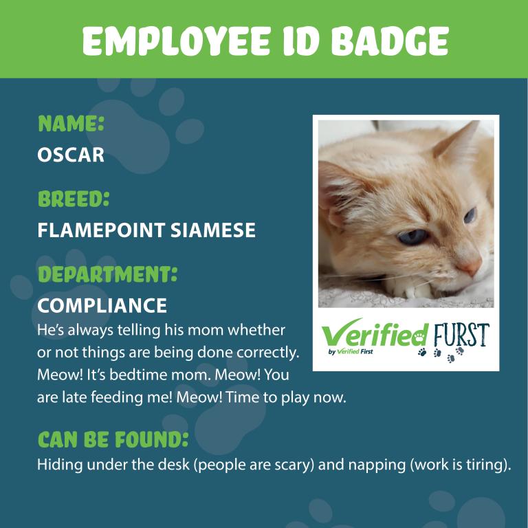 VerifiedFurst_Oscar-Flamepoint