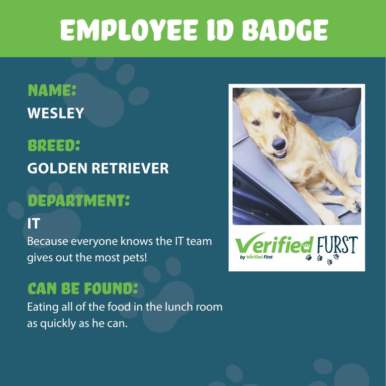 VerifiedFurst_Wesley-Golden